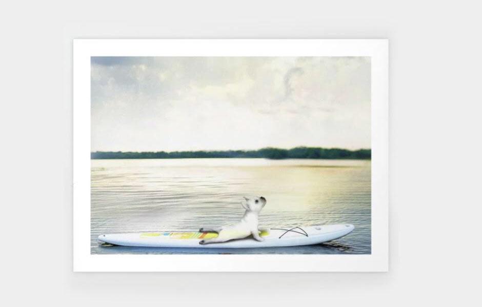 yoga dog paddle board